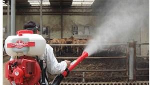 Kiểm soát dịch bệnh trên gia súc, gia cầm