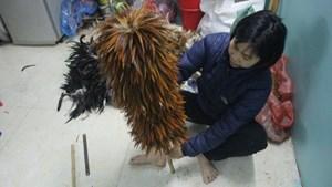 Ngôi làng 'độc nhất vô nhị' ở Thủ đô làm giàu từ… lông gà