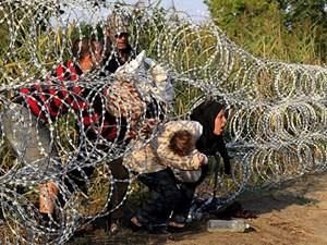 Hungary chặn người di cư bất hợp pháp