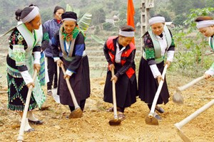 6 hợp phần để phát triển kinh tế xã hội vùng dân tộc thiểu số