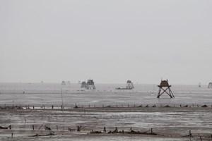 Ứng phó bão số 3: Ninh Bình còn 4 tàu cá đánh bắt gần bờ bị mắc cạn