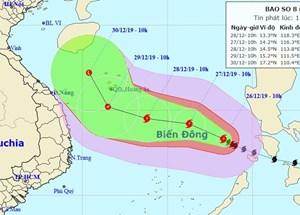 Khẩn trương ứng phó cơn bão số 8