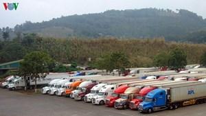 Gần 2.000 xe hàng chờ xuất khẩu sang Trung Quốc