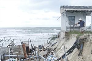 Quảng Nam: Bờ biển xã đảo Tam Hải lại sạt lở nghiêm trọng