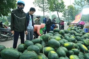 Vẫn khó gỡ ùn ứ nông sản tại các cửa khẩu