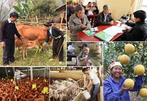 Giảm nghèo bền vững: Bứt phá từ nội lực - Bài 3: Nhanh nhưng phải bền vững