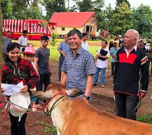 Đắk Lắk: Trao bò giống sinh sản cho 10 hộ nghèo tại huyện Cư M'gar