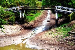 Đồng bằng Sông Cửu Long: Hạn, mặn bủa vây