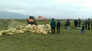 40 tấn hải sản xử lý sai quy định đã được chôn lấp