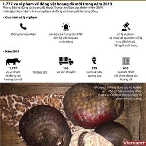 [Infographics] 1.777 vụ vi phạm về động vật hoang dã trong năm 2019