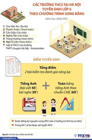 [Infographics] 7 trường tuyển sinh lớp 6 theo chương trình song bằng