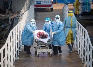 Thế giới chưa rơi vào đại dịch