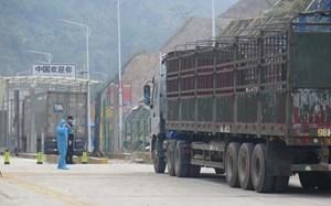 Hàng hóa xuất nhập khẩu: Chưa hết khó khăn