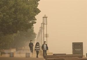 Mưa lớn đem lại hy vọng cho cuộc chiến chống cháy rừng Australia