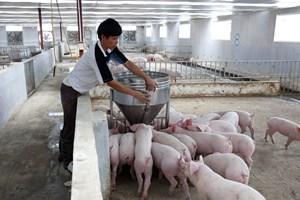 Thúc đẩy sản xuất nông nghiệp