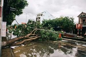 Lốc trước bão, nhiều nhà dân bị tốc mái