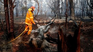 Thủ tướng gửi điện thăm hỏi các vụ cháy rừng tại Australia