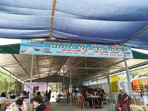 Thái Bình: Bắt giữ Phó Ban quản lý Khu du lịch sinh thái Cồn Vành vì hành vi đánh bạc