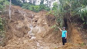 Quảng Ngãi, Quảng Nam: 1 người mất tích, 12 người bị thương do bão số 5