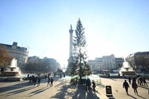 Anh: Hơn 1,1 triệu người vẫn phải làm việc trong kỳ nghỉ Giáng sinh