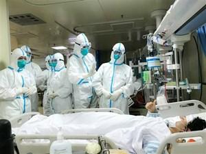 Công dân Việt Nam đầu tiên bị nhiễm virus corona tại Trung Quốc
