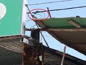 Thừa Thiên – Huế: Phát hiện người dân trộm điện để kinh doanh