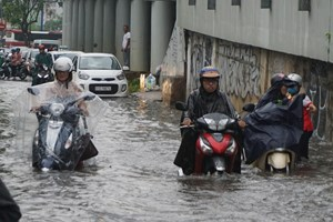 TP Hồ Chí Minh: 'Sống chung' với triều cường