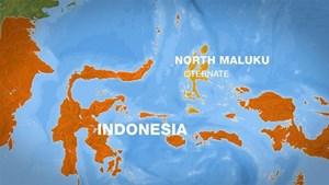 Động đất 7,1 độ ở Indonesia, ban bố cảnh báo sóng thần