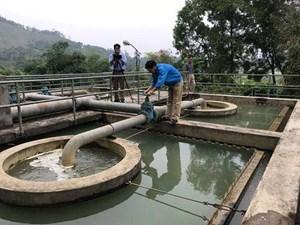 Nghệ An: Hàng nghìn hộ dân sử dụng nước nhiễm asen