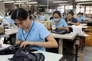 Chính sách BHXH áp dụng từ năm 2020: Người lao động cần biết