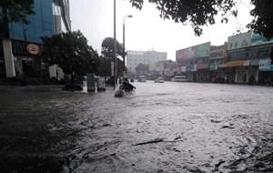 [ẢNH] TP Vinh lại ngập nặng sau trận mưa lớn