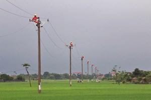 Điện lực Nam Định chăm sóc khách hàng đa kênh thông minh