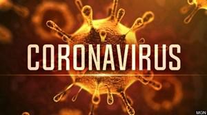 WHO đặt tên chính thức cho dịch do virus corona chủng mới là COVID-19