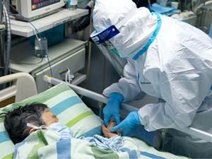 WHO cân nhắc ban bố tình trạng 'khẩn cấp toàn cầu' do virus Vũ Hán