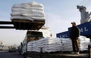 Nga viện trợ 25.000 tấn lúa mỳ cho Triều Tiên đối phó nạn hạn hán
