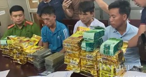 Từ Bắc Kạn vào Nghệ An vận chuyển lượng ma túy cực lớn cho một người Lào