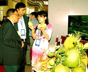 Ấn Độ, thị trường tiềm năng cho nông sản ĐBSCL