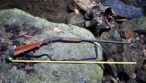 Mang súng vào rừng tìm mật ong, người đàn ông bị súng cướp cò tử vong