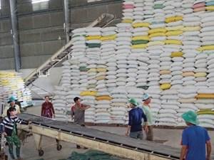 Có hay không việc trục lợi  trong xuất khẩu gạo?