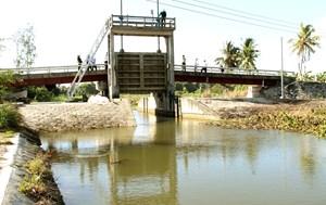 Đồng bằng Sông Cửu Long: Đối diện thách thức - Bài 3:  Xâm nhập mặn kéo dài