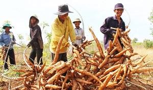Đổi thay ở vùng cao Ninh Thuận