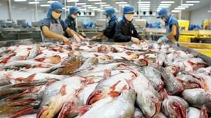 Áp thuế cá tra, basa là không khách quan, mang tính bảo hộ quá mức