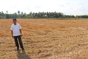 Hạn mặn ở miền Tây: Tìm phương thức thích ứng