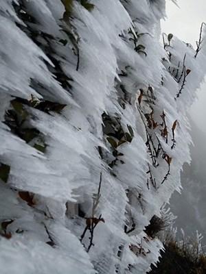 Băng giá phủ trắng núi đồi ở Sa Pa, Bát Xát, nhiệt độ giảm sâu