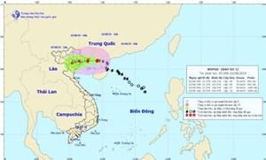 Chiều nay 2/8, bão số 3 đi vào vùng biển Quảng Ninh-Hải Phòng