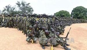 Nigeria: Quân đội tăng cường truy quét phiến quân