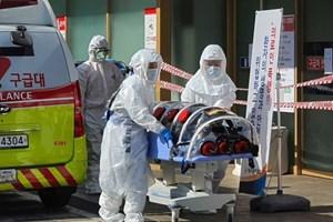 Tăng kỷ lục 594 ca, số người nhiễm corona ở Hàn Quốc lên gần 3.000