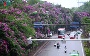 Cấm ô tô đi đường Kim Mã đang thi công nhà ga tuyến Metro