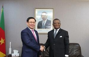 Việt Nam muốn tăng cường hợp tác nhiều mặt với Cameroon