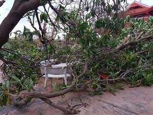 Cận cảnh Trường Sa sau bão số 16